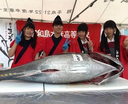 fishgirlimage1